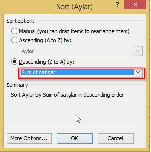 Microsoft Excel - ozet_tablo_ilk_n8